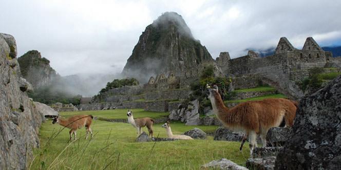 Perú Mágico & Naturaleza