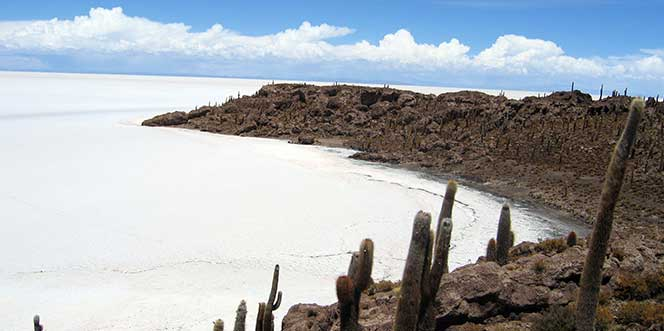 El Salar De Uyuni (Ref.Básicos)