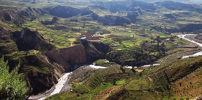 Perú Exotico Express